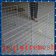 Manufacture Supply welded wire mesh galvanized roll/pannel