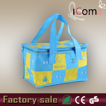 Custom thermal bag/thermal cooler bag/thermal pizza bag(Item no.:C150208)