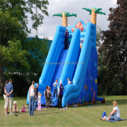 China giant inflatable water slide for adult,High Quality Inflatable Slide