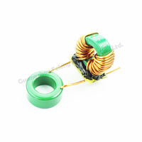 Professional In Inductor Coil Toroidal Power
