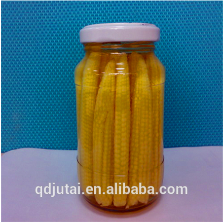 Wholesale canned vegetable / canned baby corn in jar glass