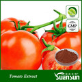 Alibaba gold supplier high quality tomato extract lycopene powder