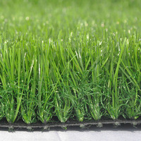 Hot Selling Beautiful Artificial Lawn