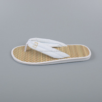 High quality wholesale price cheap spa flip flop slippers