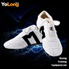 New Style Taekwondo shoes Fitness Sneakers Martial arts equipment for wholesale