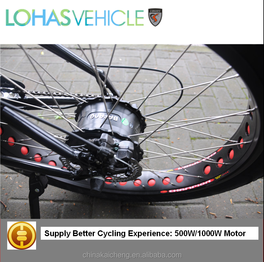 E bicycle! Electric Bicycle Best Seller - Award Winning Electrical Bike Manufacturer in China-Lohas Bicycle