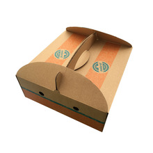 N024 Recyclable Paper Material Custom Fruit Corrugated Box Packaging Wholesale