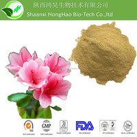 Best Price Rhododendron simsii extract/Mountain Azalea P.E