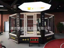 Octagon Fighting Elevated MMA Cage for Sale