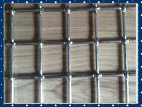 Strong Quality Welded Wire Mesh Galvanized