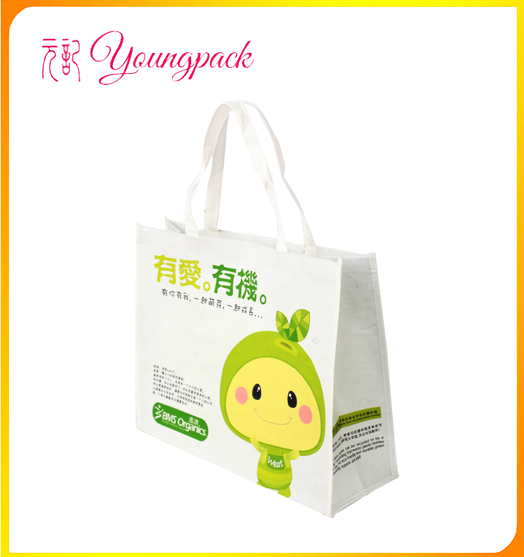 Factory Price High Quality Eco-friendly Promotion Rpet Bag