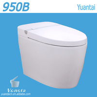 China Alibaba Factory Bathroom Design Types of Water Closet Smart Toilet