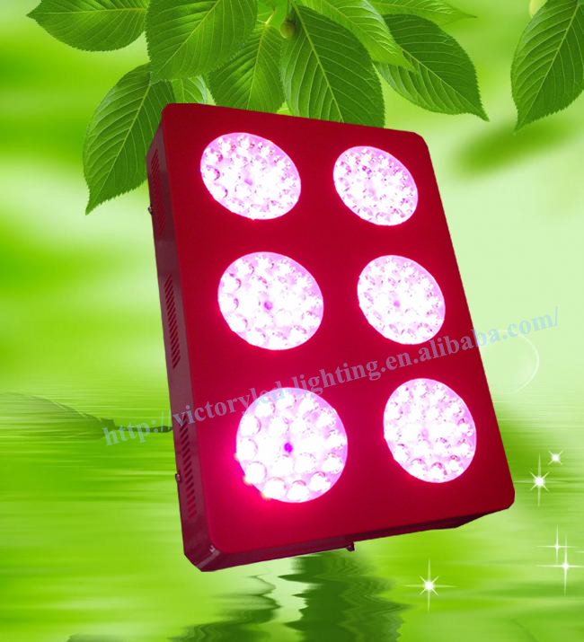 New model high power 324w apollo 6 full spectrum high brightness for plant grow