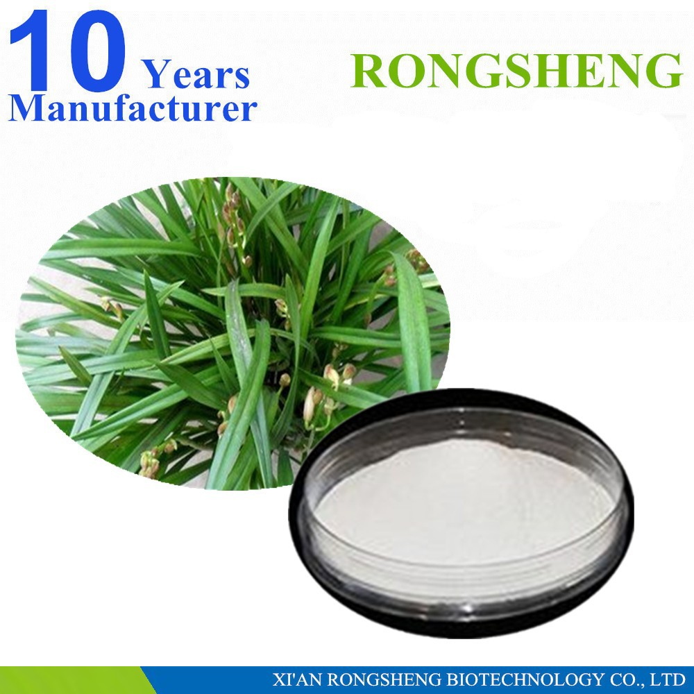 factory supply high quality saw palmetto extract powder