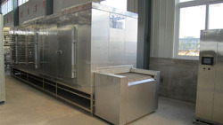 500Kg/H Cherry iqf fruits quick freezing freezers for pineapple