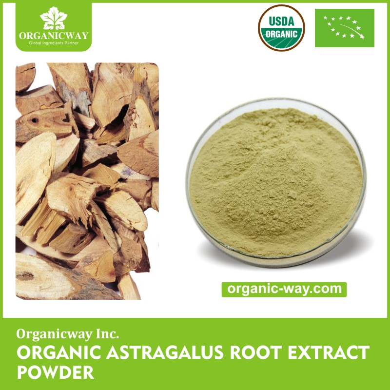 Factory price Astragalus Root