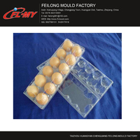 plastic egg tray injection mould maker
