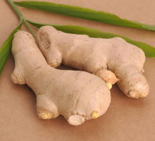 Market price for fresh ginger needed from China best GINGER