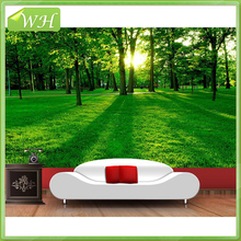 Beautiful forest landscape jungle decorating home wall murals wallpaper