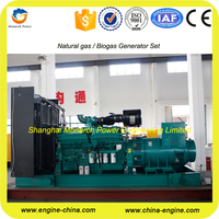 China made 1000 kw natural gas generator with Cummins engine