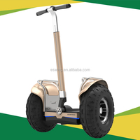 Eswing Strong Climb capability ES6 Off Road 2015 adult electric scootersoff road motor scooters Balance Scooter with Factory