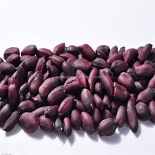 china raw peanuts prices black color skin peanut