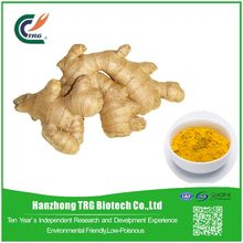 EU standard ginger root extract powder packing machine with low price