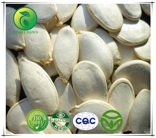Chinese Organic Pumpkin Seeds/Snow White Pumpkin Seeds