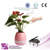 Touch Music Smart Plant Playing Piano