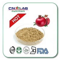 Hot-sell pomegranate seeds extract powder