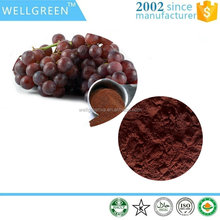 Manufacturer supply organic Grape Seeds Extract 80% polyphenols
