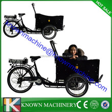 Three wheel electric cargo bike for family use, electric motor bike