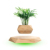 Set your plants free HCNT magnetic levitation bonsai hexagon houseplant pot