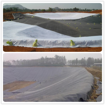HDPE Pond Geomembrane Liner