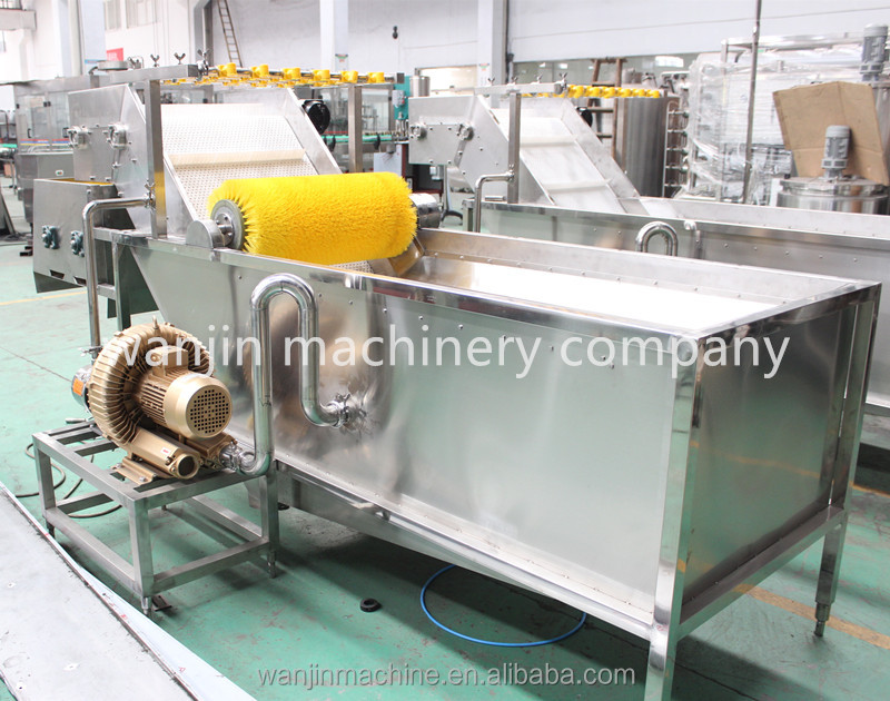 Automatic Air Bubble Cleaning Machine, Fruit and Vegetable Washing Machine (Bubble Washer)