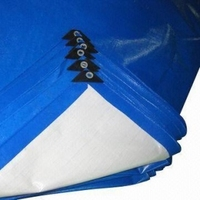 100% PE White inner fabric, HDPE woven, both sides LDPE Coated ,Light Blue/White PE Tarpaulin Roll to Ethiopian Market