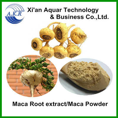medicine for long time sex/medicine for long penis/sex medicine for men maca extract 4:1 10:1 free samples