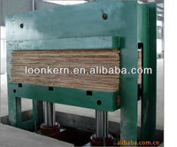 poplar core veneer cold press machine/professional china plywood cold press