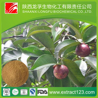 Factory supply mangosteen rind extract powder