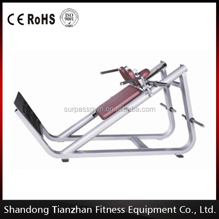 Wholesale Names Of Gym Equipment /Hack Squat TZ-5059