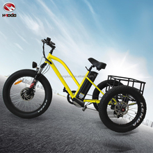 2017 New model 500W fat tire 3 wheel cargo electric tricycle with cabin