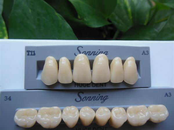 CE certification three layer false teeth