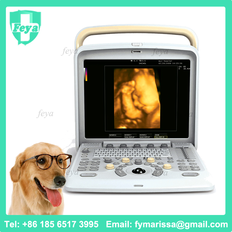 FY-Q5VET Portable Veterinary Color Doppler Ultrasound Equipment System