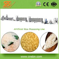 Full Automatic Broken Rice Capacity Extruded Rice Making Machine/Long Rice Processing Line