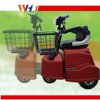New Three Wheel 2 Seater Folding Adult Electric Tricycle