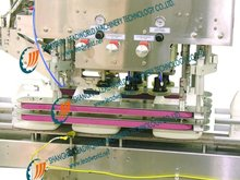Linear High speed Automatic Capping Machine