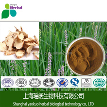 Zhimu Extract/Anemarrhenae Asphodeloides Extract,Anemarrhena Root Extract Powder/High Quality Rhizoma Anemarrhenae In Stock