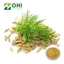 4:1 10:1 20:1 Natural fennel extract powder fennel seed extract