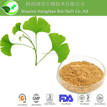 HongHao Supply For cure hypertension ingredients ginkgo biloba extract of leaves P.E