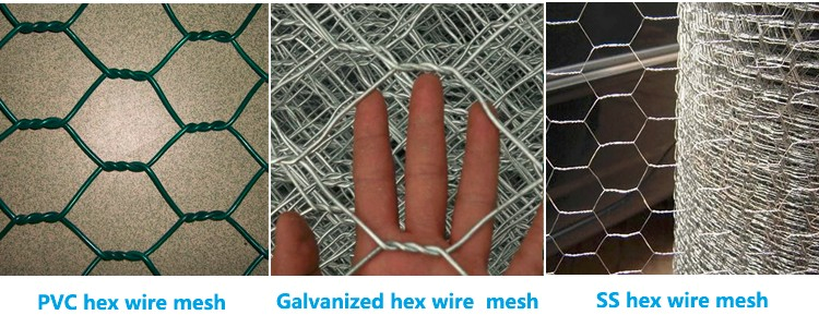 galvanized chicken wire with competitive price